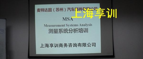 024-MSA培训