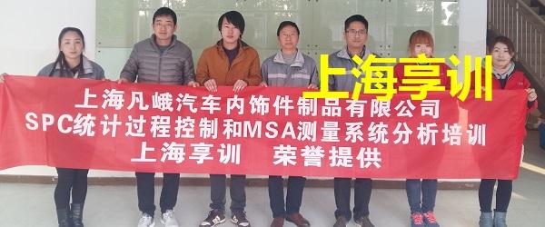 SPC培训-MSA培训――上海凡峨汽车内饰件制品有限公司